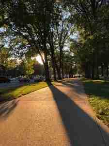 Sidewalk in Sunlight